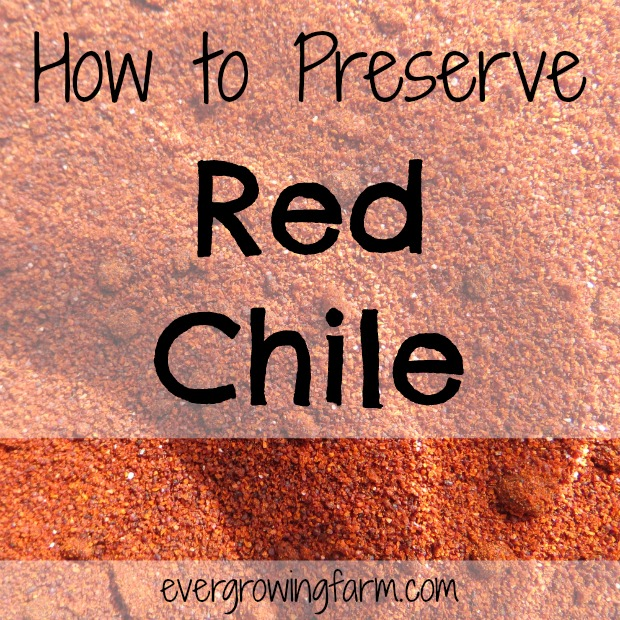 How to Preserve Red Chile - powder