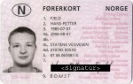 Norwegian driver's license