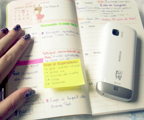 How To\u2026 Stay Organized Using a Planner Every College Girl
