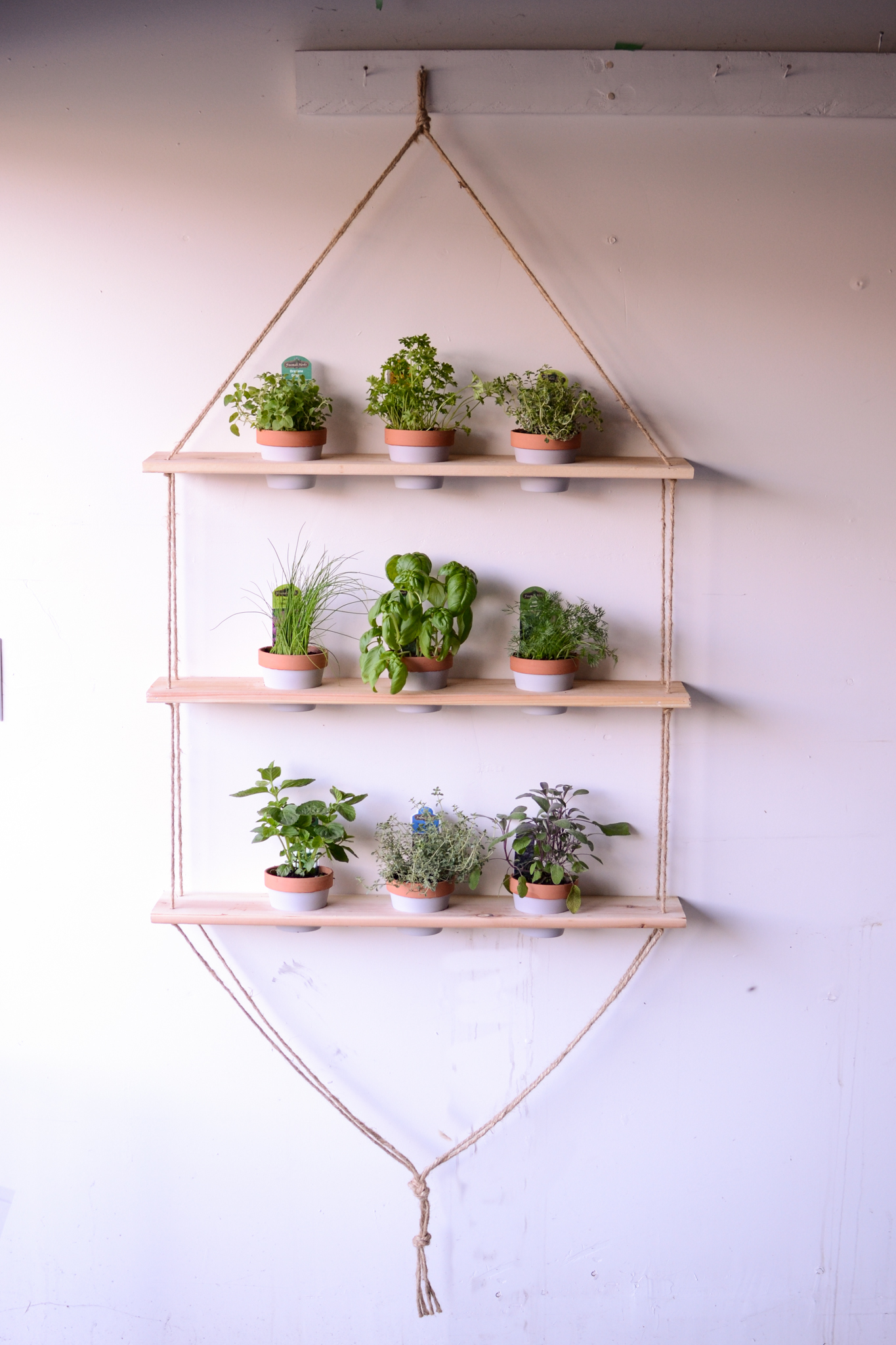 Hanging Indoor Herb Garden Indoor Hanging Herb Garden Everyday Brandy