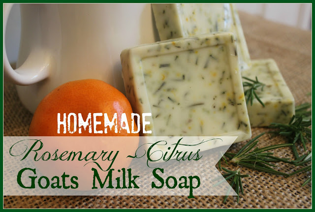 Homemade Rosemary-Citrus Goats Milk Soap by The Everyday Home #going green #organic #homemadeproducts #soap