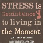 stress is 150x150 2 Systems For Achieving Your Goals