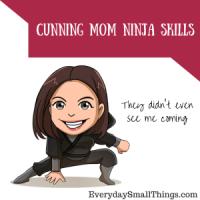 My Alter Ego: Ninja Mom