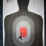 Grease Gun Target