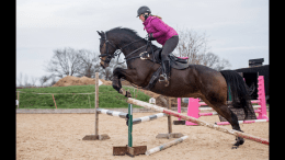 Victoria Bax - Frankie attempting his first ever corner jump