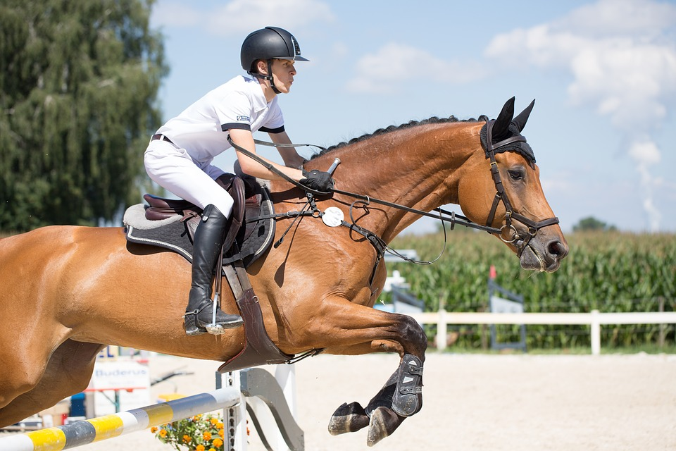 Kinesiology Tape: Helping Riders and Horses Stay Injury Free