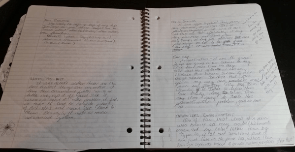 My pre-journaling thoughts