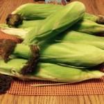 darren organic corn 082015