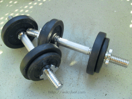 A pair of dumbbells