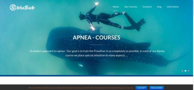 blue-sub-website