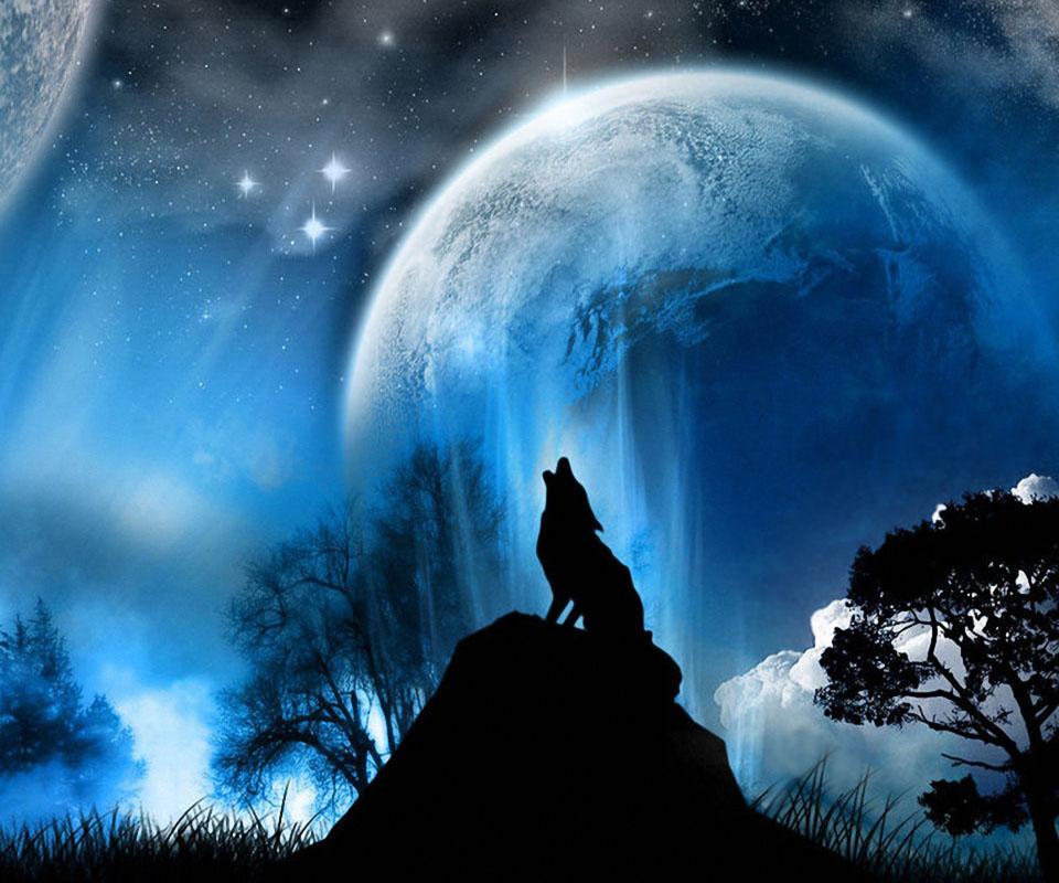 Wolf Wallpaper Iphone Coole Profilbilder Evi Smile123
