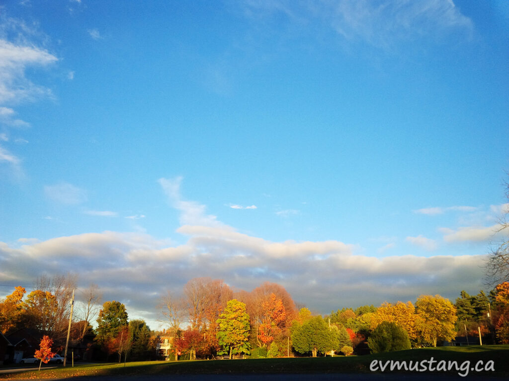 image of colourfull fall trees against a blue sky with sculptural cloud on the horizon