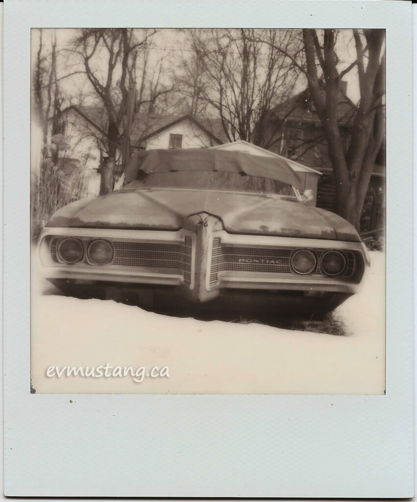 polaroid image of rusty parisienne