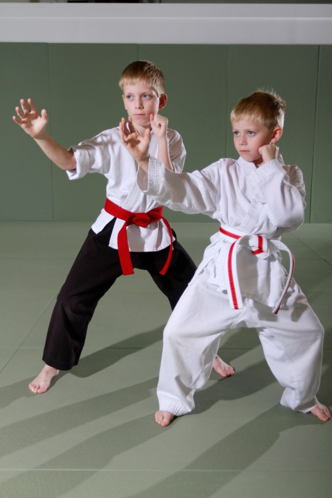 Brothers - Evolve All Martial Arts Training Center