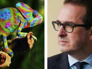 Owen Smith Chameleon