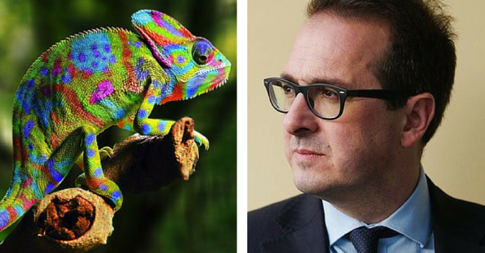 Owen Smith Chameleon