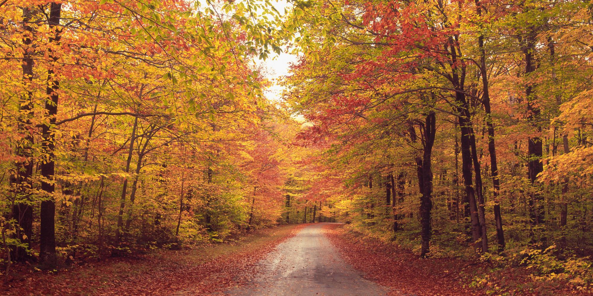 Thomas Kinkade Fall Wallpaper First Day Of Autumn Evolvingidentity