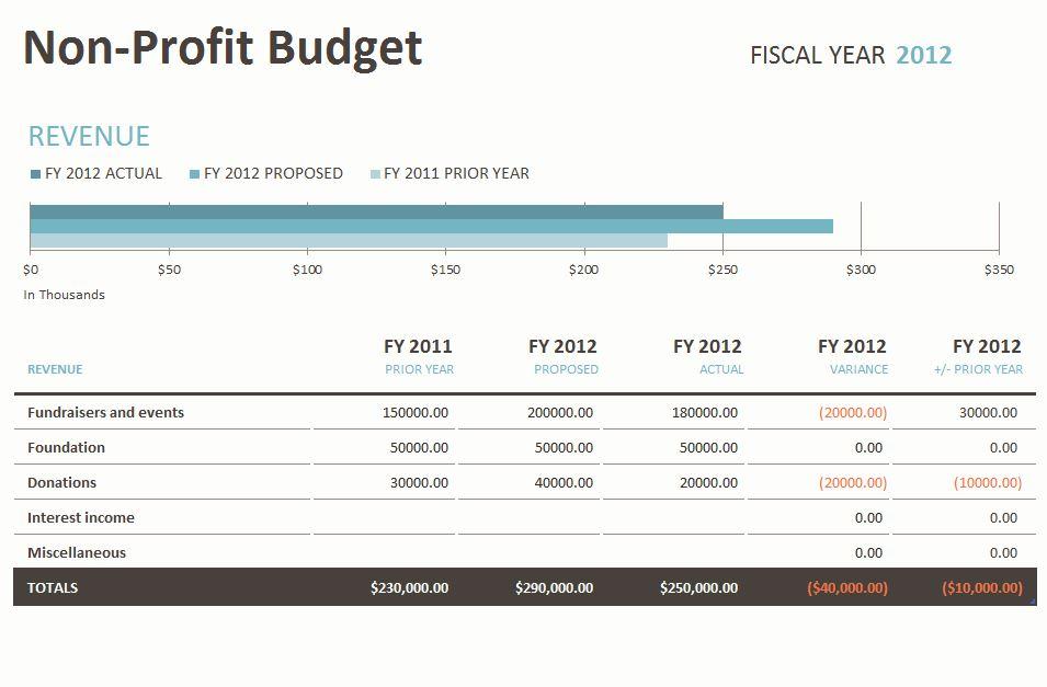 Non Profit Budget Template Non Profit Budget