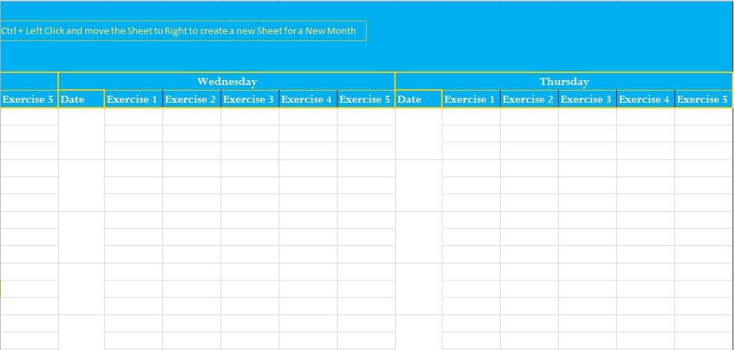 Professional Exercise Log Template Excel - Excel Tmp - exercise log template