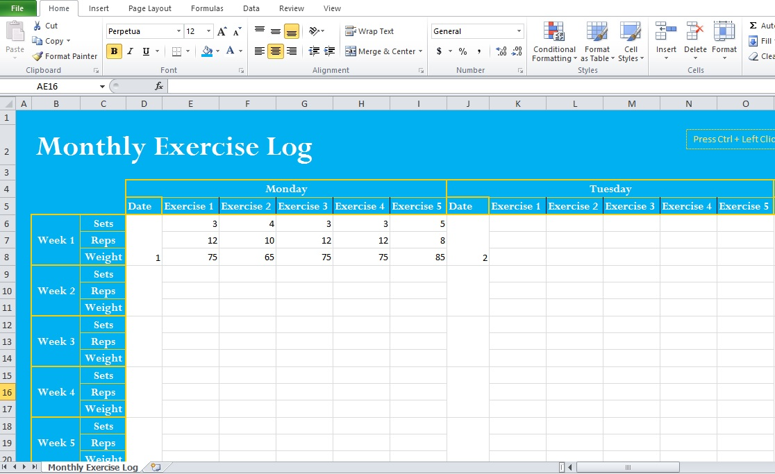 Exercise Template Excel exercise and fitness planner template - exercise log template
