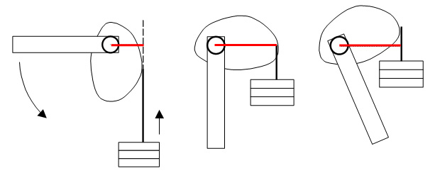 Lever Arm Diagram : Moment arm exercise education