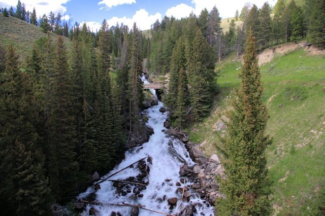 Waterfall just off  Beartooth Highway, which travels the Absaroka Range in Wyoming and Montana, August 14, 2014