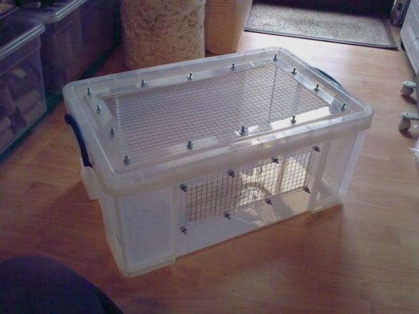 7 Essentials To Make A Hedgehog House Hedgehog Cage Setup