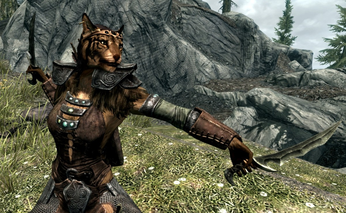 The history of the Khajiit
