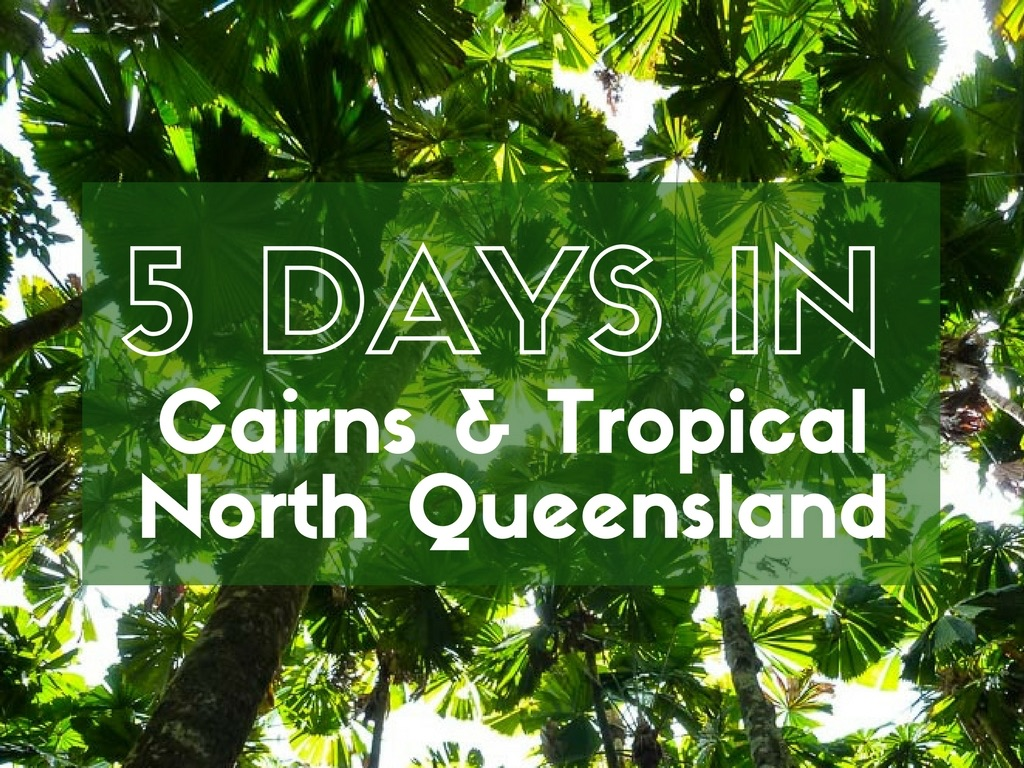 North Queensland Holiday Packages 5 Days In Cairns And Tropical North Queensland With Expat Getaways