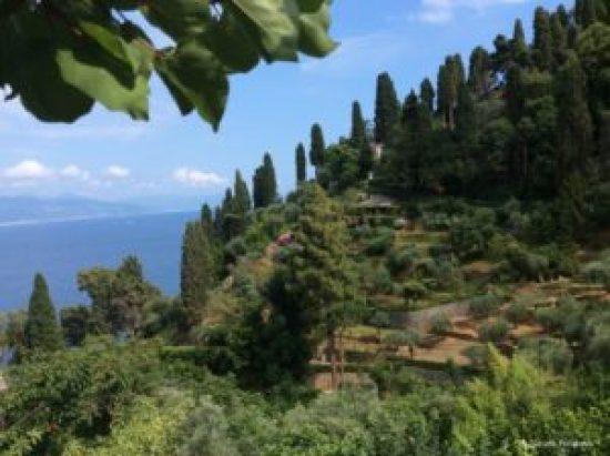 Portofino Natural Park