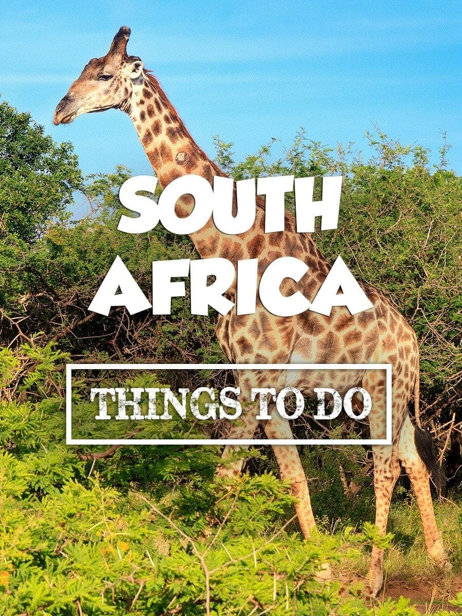 Do Things 10 Super Fun Things To Do In South Africa Expert Vagabond