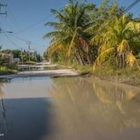 The Streets are Full of Water on Isla Holbox, Mexico