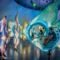 New York City's Sea Glass Carousel