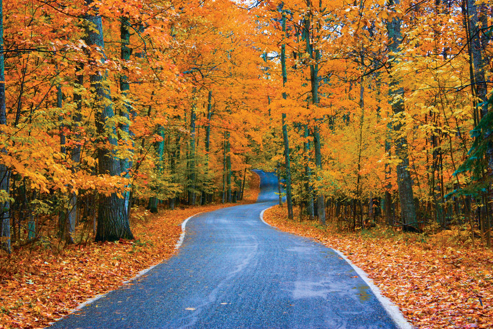 Pure Michigan Fall Wallpaper Best Ways To Enjoy Fall Color Along Michigan S Famed