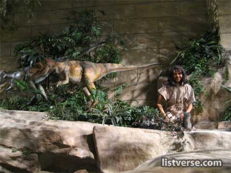 800Px-Creationmuseum15