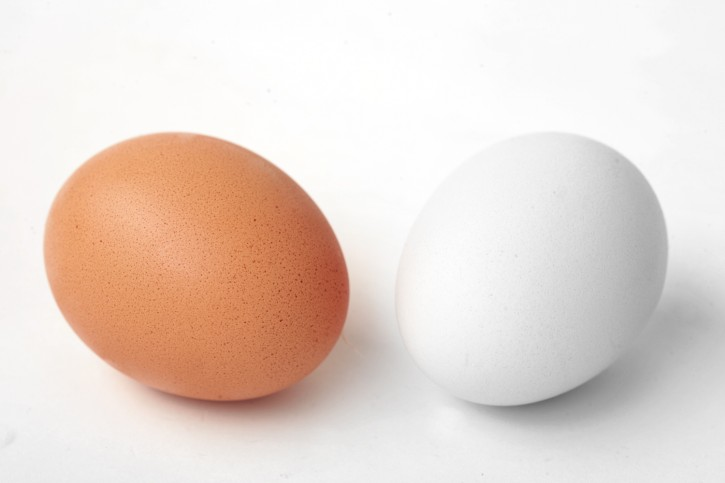 brown_white_egg