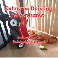 Extreme Driving Adventures- Testosterone Behind the Wheel