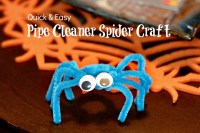 Easy Pipe Cleaner Spider Craft