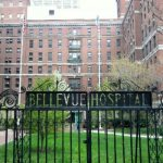 Ebola in New York? Healthcare Worker Being Tested for Disease