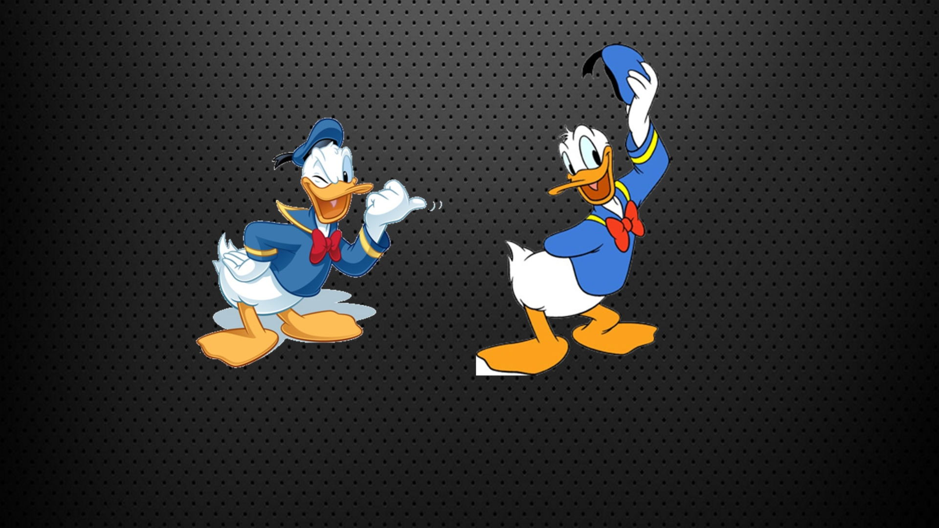Girl Boss Wallpaper Iphone Donald Duck Wallpaper For Desktop 1920x1080 Full Hd