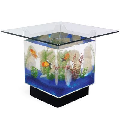 Cool, But Fishy, Aquariums