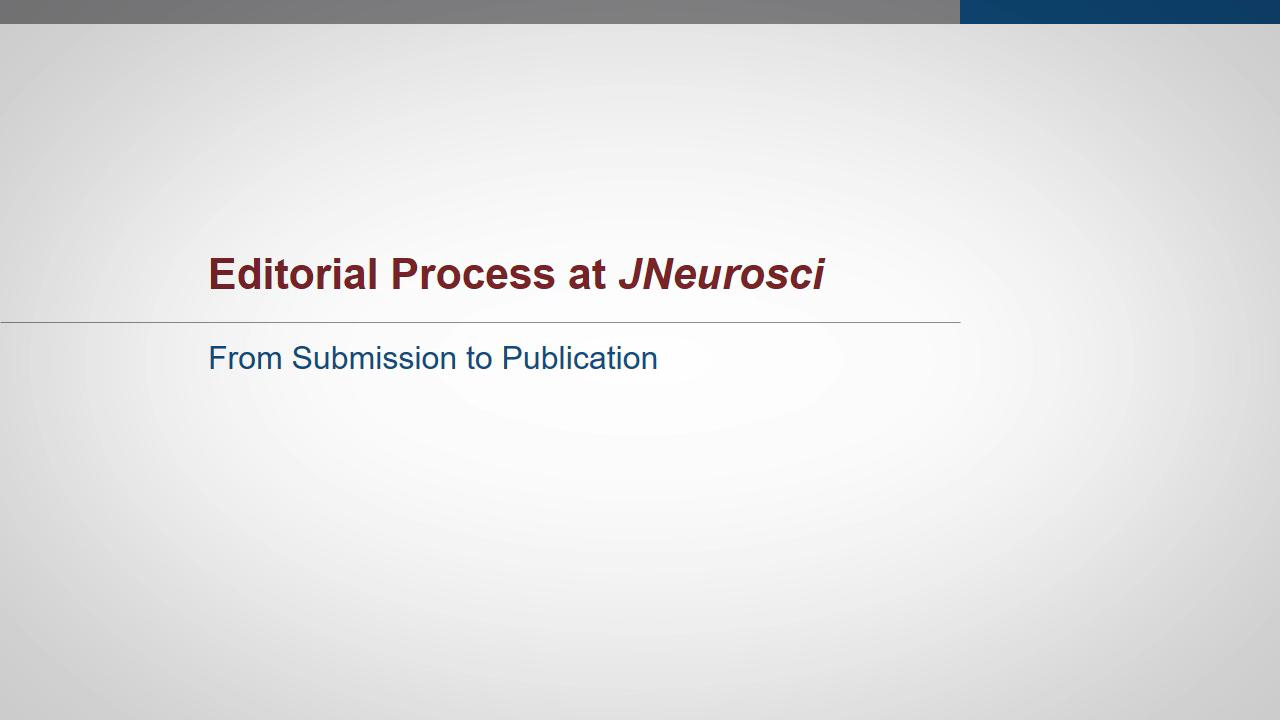 Chat Libre Y Gratis Journal Of Neuroscience