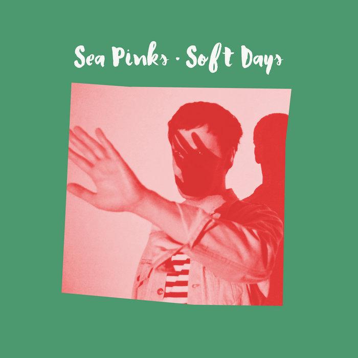 Soft Days Sea Pinks