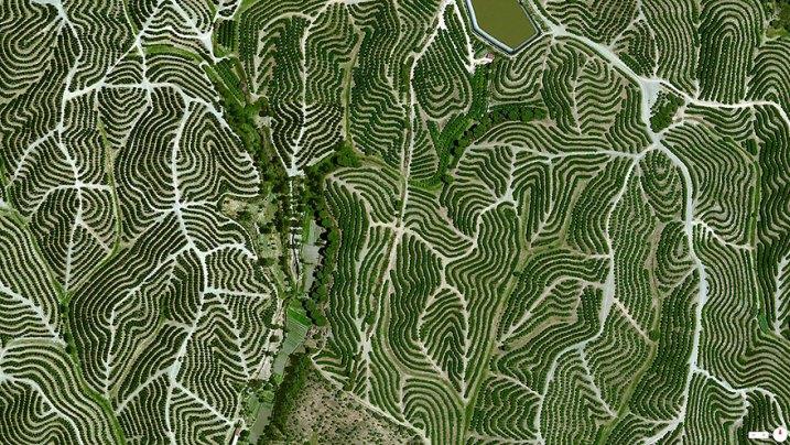 37°42′12″N 6°36′10″W. : Vinranker i Huelva, Spania
