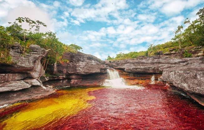 Cano Cristales river i Colombia