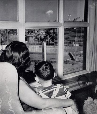 Mor og sønn ser på en atomsopp i Las Vegas,  1953