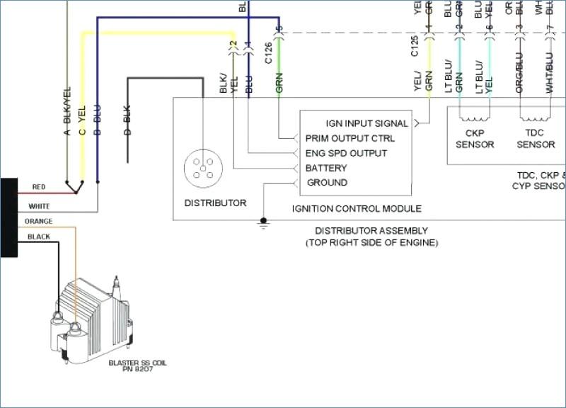 Honda Element Stereo Wiring Diagram Smart Wiring Electrical Wiring