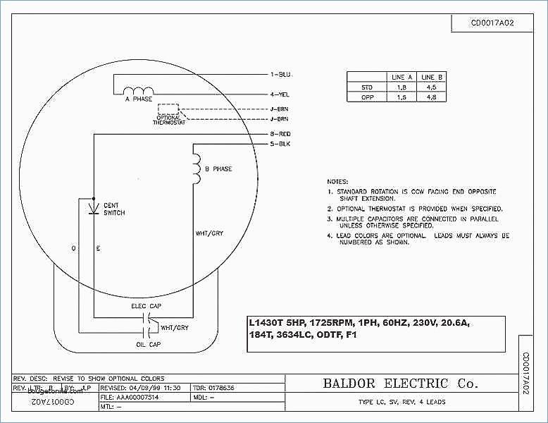Century 2 Speed Motor Wiring Diagram Download Wiring Diagram Sample