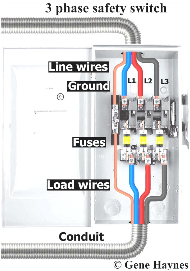 Square D Homeline Load Center Wiring Diagram Collection Wiring