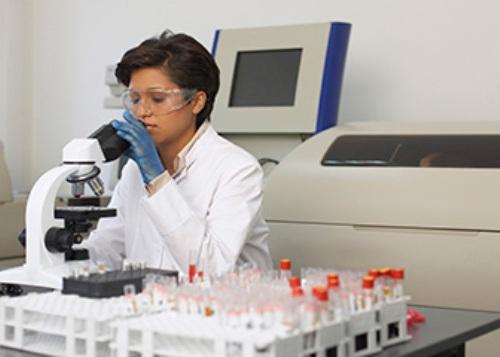 Career field description bio medical engineering College paper - biomedical engineering job description